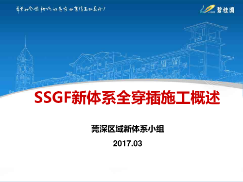 碧桂园SSGF新体系全穿插施工概述汇报讲义