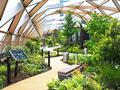 横木屋顶花园:唤醒一座城市的船