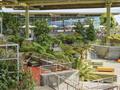 Facebook旧金山企业园区20+21号楼无需申请自动送景观设计