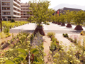 安纳西Paul Grimault休闲广场,法国 / Agence APS